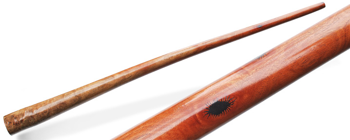 Protozoa-didgeridoo-header.jpg